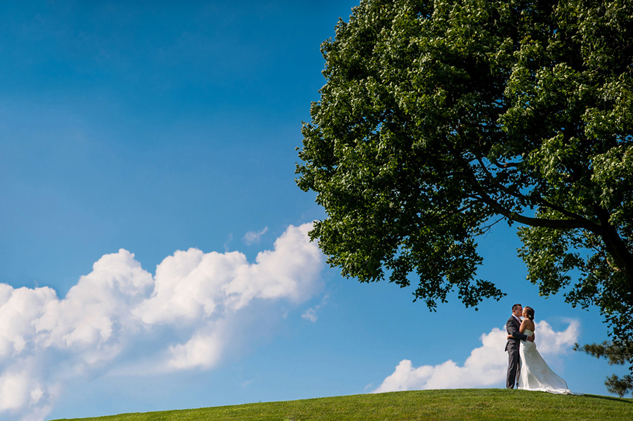 Bride and groom portrait under tree and blue skies